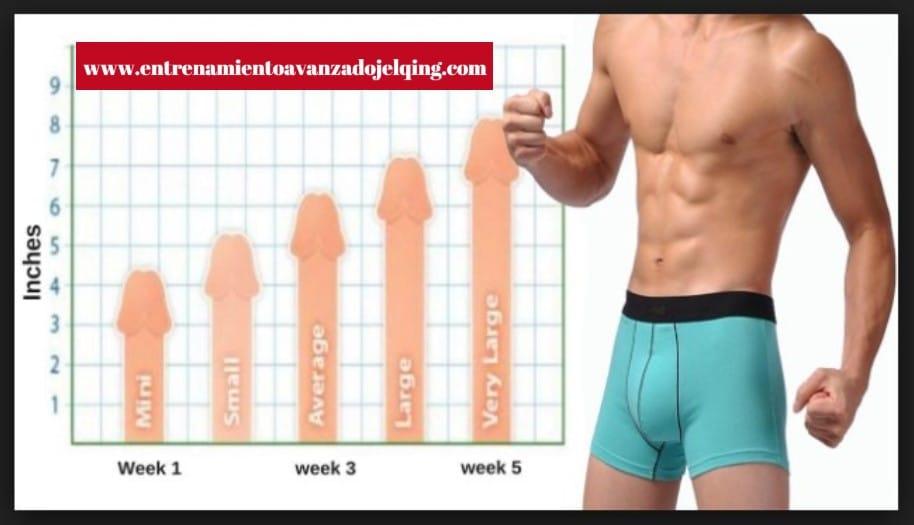 5 técnicas para el crecimiento del pene comprobadas